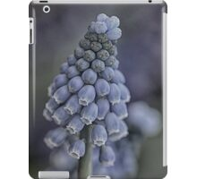 Blue promise of spring iPad Case/Skin