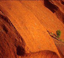 Uluru...detail2 by snapper
