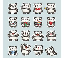 Various feeling of Panda Photographic Print