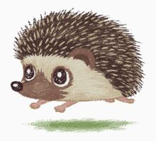 Hedgehog running by Toru Sanogawa