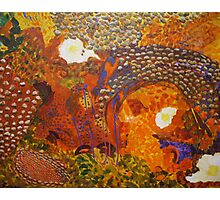 Dreamtime Breakfast - Colours of the Outback Photographic Print