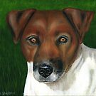 'Otis' - Jack Russell Terrier by Michelle Wrighton