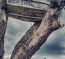 High Tide by Paul Amyes