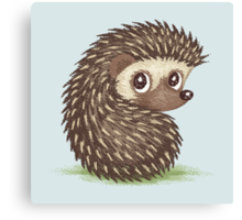 Hedgehog which looks at back Canvas Print