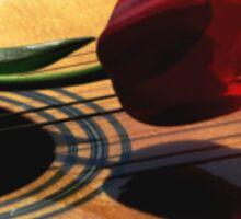 Serenade Sticker