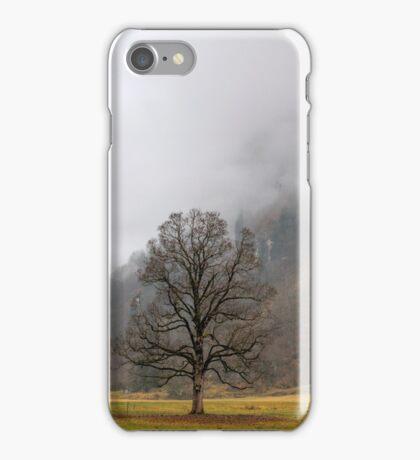 Winter in green iPhone Case/Skin