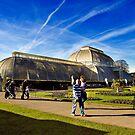 Kew Gardens Palm House by Trevor Patterson