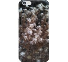 White Desert Flowers iPhone Case/Skin