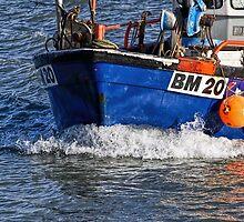 Slippery Dick 2 ~ Lyme Regis by Susie Peek