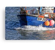 Slippery Dick 2 ~ Lyme Regis Metal Print