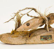 grouper by jim lingwood