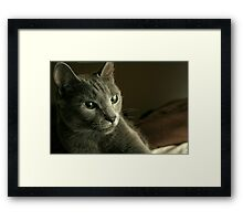 Get That Camera Out Of My Face  Framed Print