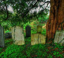 Headstones, St Breoke by Caroline Bland