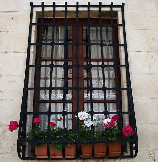 The window by Christian  Zammit