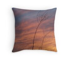 Prairie Grass Against A Panhandle Sunset Throw Pillow