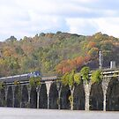 Amtrak at Rockville Bridge II by James Wheeler