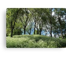 Meadow and trees in spring Canvas Print