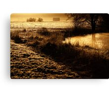 24.2.2014: One Spring Morning Canvas Print