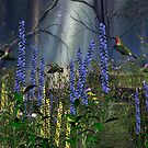 Enchanted Forest by Walter Colvin