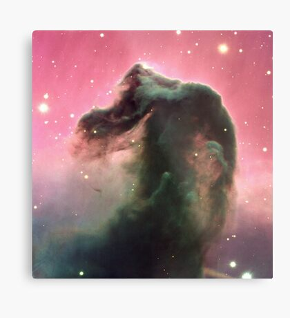The Horsehead Nebula - Giant Print of the Horse Head Nebula Metal Print