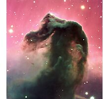 The Horsehead Nebula - Giant Print of the Horse Head Nebula Photographic Print