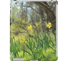 Daffodils on a sunny spring day iPad Case/Skin