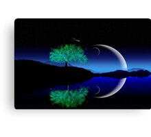 Alone tree Canvas Print