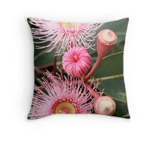 flowering eucalypt Throw Pillow
