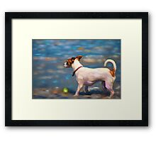 Jack Russell Terrier at the Beach Framed Print