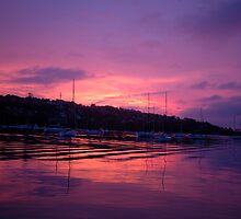 Harbour Lights -Middle harbour, Sydney Australia by Philip Johnson