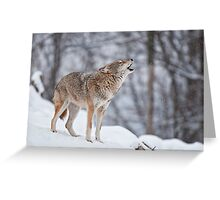 Howling Good Time Greeting Card