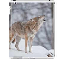 Howling Good Time iPad Case/Skin