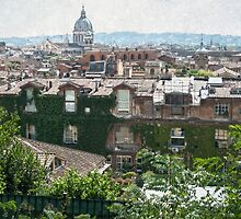 View city of Rome Italy by zenazero