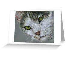 Tara - White and Tabby Cat Painting Greeting Card