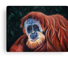 Wise One Canvas Print