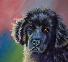 Rainbows & Sunshine Newfoundland Puppy  by Michelle Wrighton