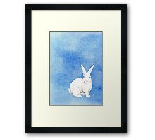 Rabbit Blue Framed Print