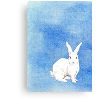 Rabbit Blue Canvas Print