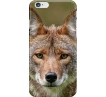 Coyote Portrait  iPhone Case/Skin