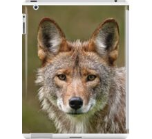 Coyote Portrait  iPad Case/Skin