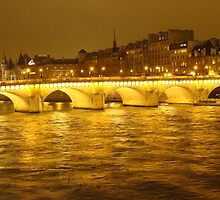 Pont Neuf Bathed in Gold by Nico3