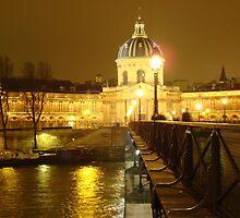 Institut de France  by Nico3