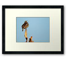 "Western Meadowlark - ""Sing a Song"" Framed Print"