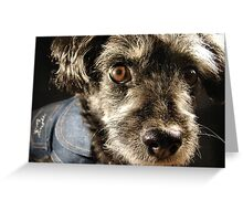 Little Mad Dog Greeting Card