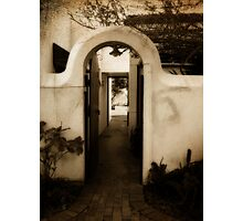 Ryneveld Lodge Alley Photographic Print