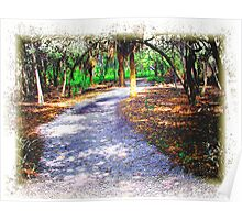 Walkway Through The Park Poster