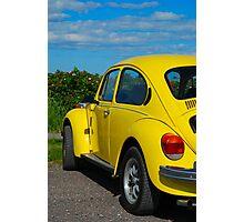 Bright Bug Photographic Print