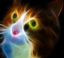 <º))))>< U LIGHT UP MY LIFE CAT VERSION TWO CARD/PICTURE<º))))><  by ✿✿ Bonita ✿✿ ђєℓℓσ