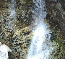 Shorts Creek Falls III by Gregory Ewanowich