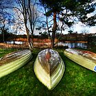 Three Boats by john0